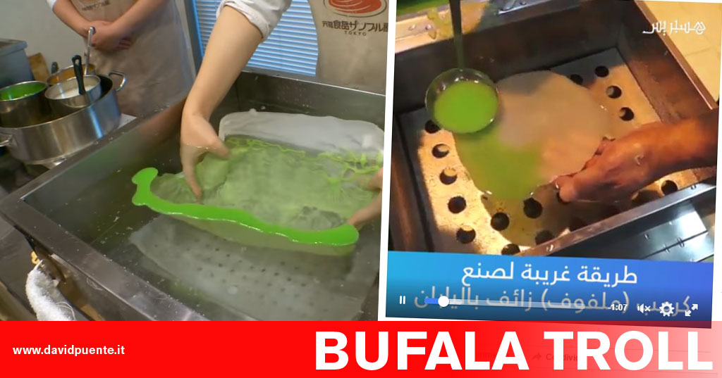 bufala-troll-insalata-plastica-giappone